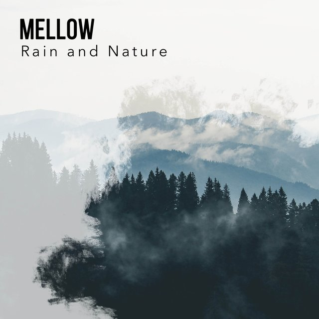 Mellow Natural Rain and Nature Recordings