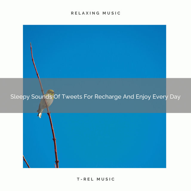 Sleepy Sounds Of Tweets For Recharge And Enjoy Every Day