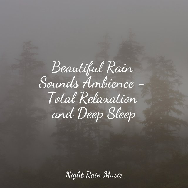 Beautiful Rain Sounds Ambience - Total Relaxation and Deep Sleep