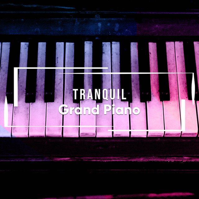 Tranquil Café Grand Piano Ensemble