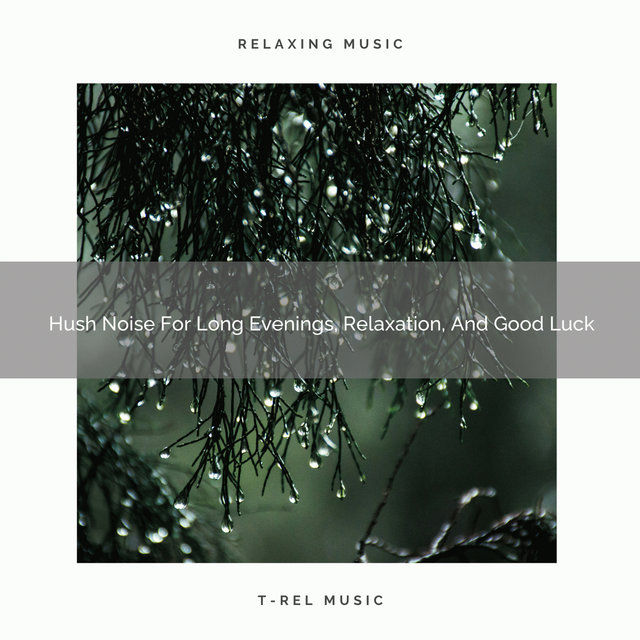 Hush Noise For Long Evenings, Relaxation, And Good Luck