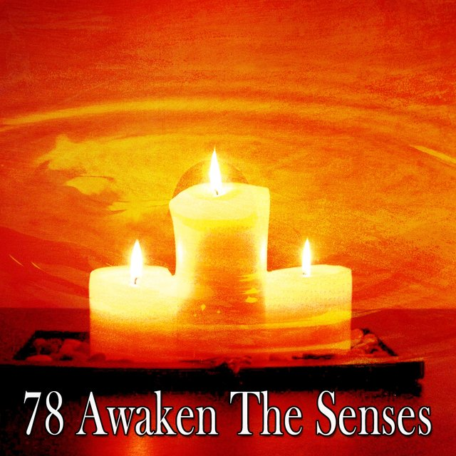 78 Awaken the Senses