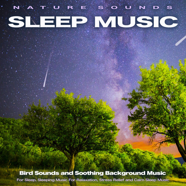 Nature Sounds Sleep Music: Bird Sounds and Soothing Background Music for Sleep, Sleeping Music For Relaxation, Stress Relief and Calm Sleep Music