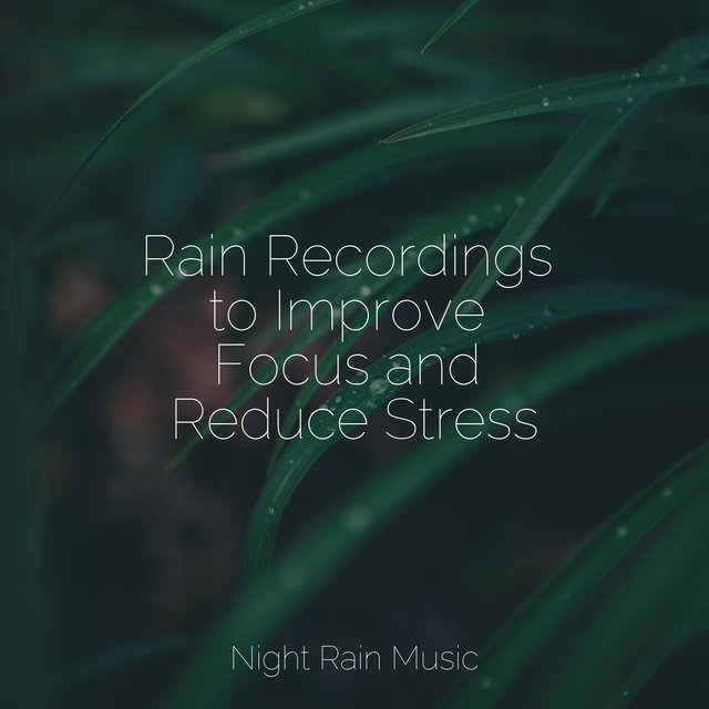 Rain Recordings to Improve Focus and Reduce Stress
