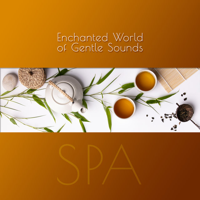 Enchanted World of Gentle Sounds – SPA: 30 Tracks for Your Wellbeing, Inner Stillness, Calm Delight