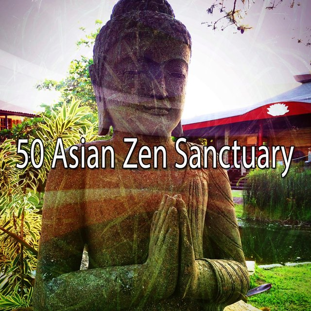 50 Asian Zen Sanctuary