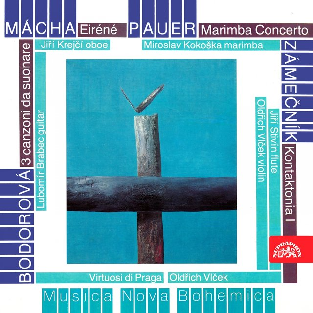 Mácha, Pauer, Bodorová and Zámečník: Chamber Works for Strings