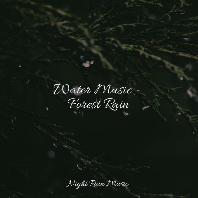 Water Music - Forest Rain