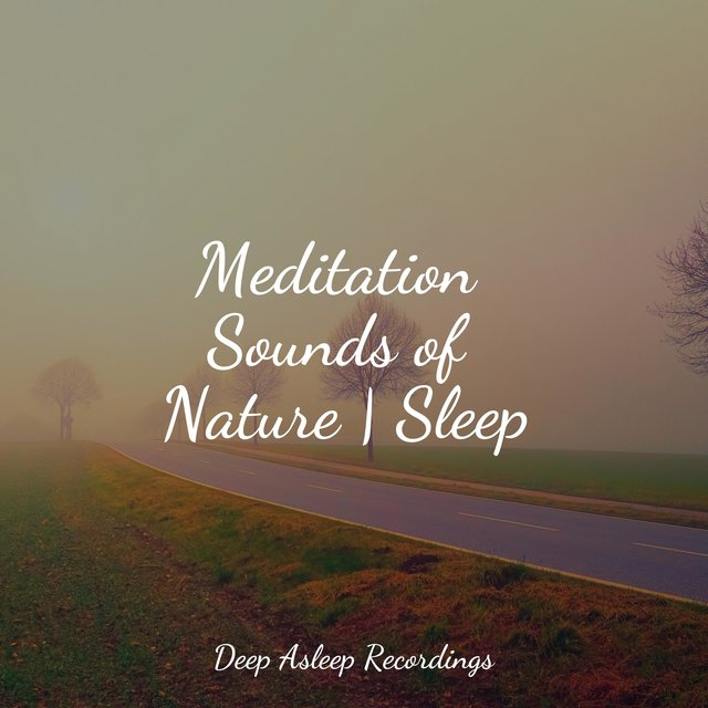 Meditation Sounds of Nature | Sleep