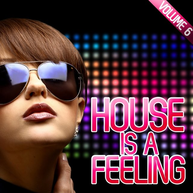 House Is a Feeling, Vol. 6
