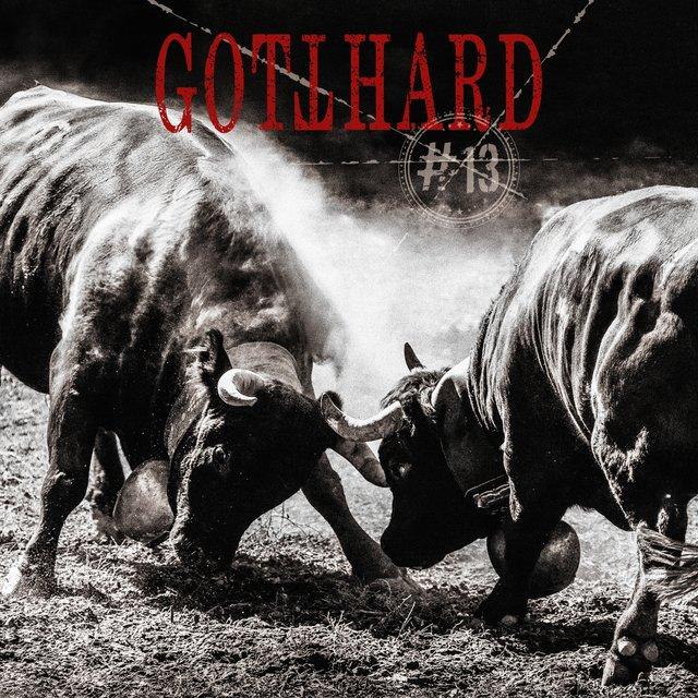 Cover art for album #13 by GOTTHARD