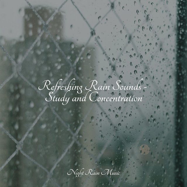 Refreshing Rain Sounds - Study and Concentration