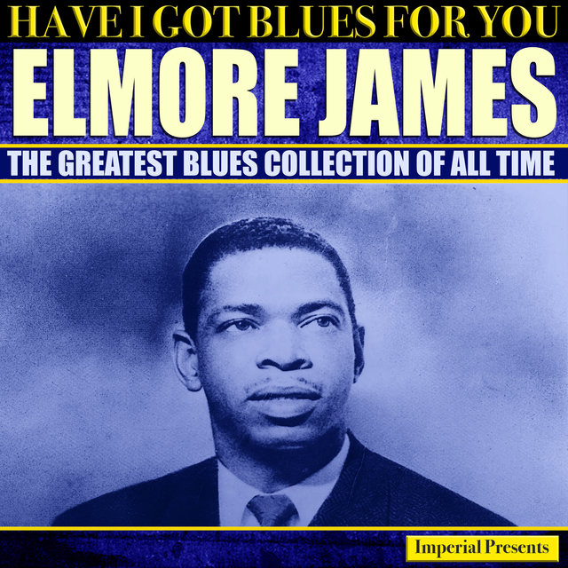 Elmore James (Have I Got Blues Got You)