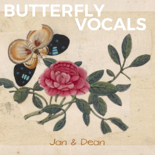 Butterfly Vocals