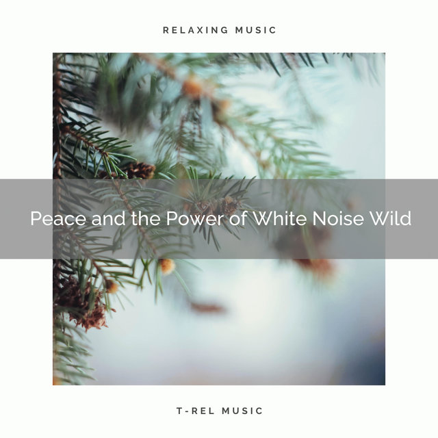 0001 Peace and the Power of White Noise Wild
