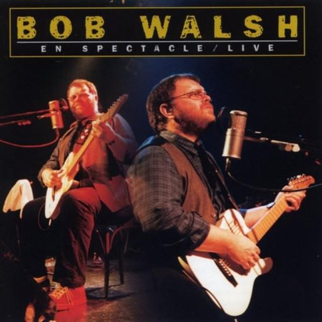 Cover art for album  by Bob Walsh