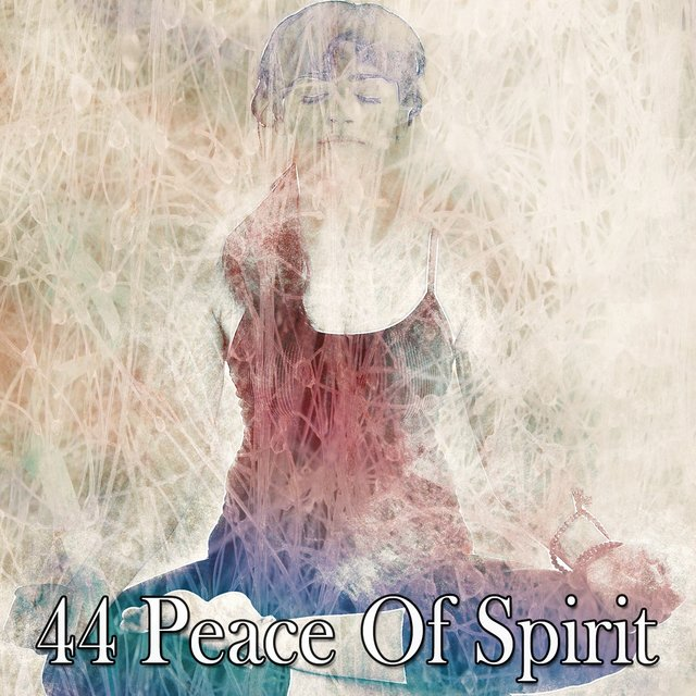 44 Peace of Spirit