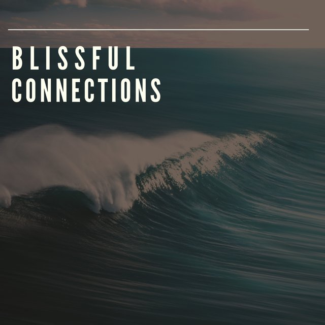 # 1 A 2019 Album: Blissful Connections