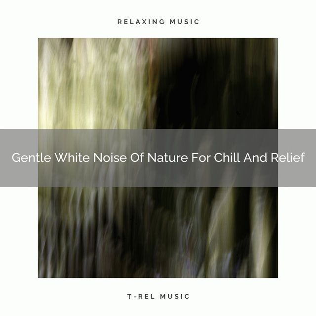 2020 Best: Gentle White Noise Of Nature For Chill And Relief