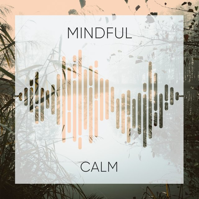 # Mindful Calm