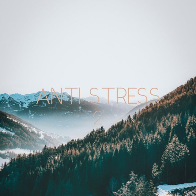 Anti Stress, Vol. 2