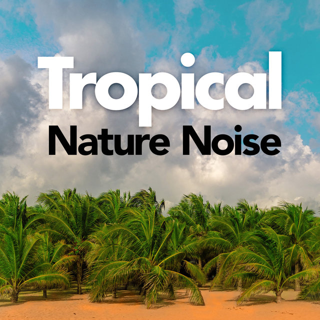 Tropical Nature Noise