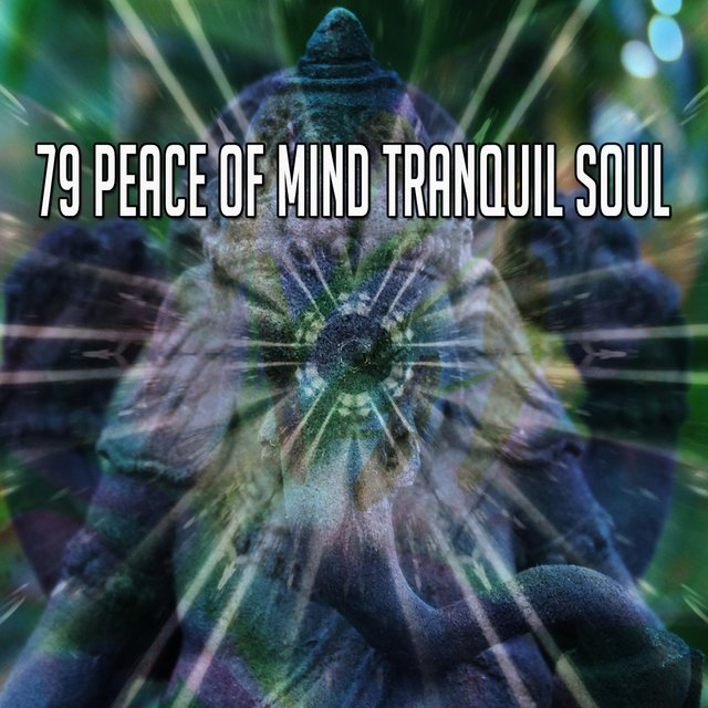 79 Peace of Mind Tranquil Soul