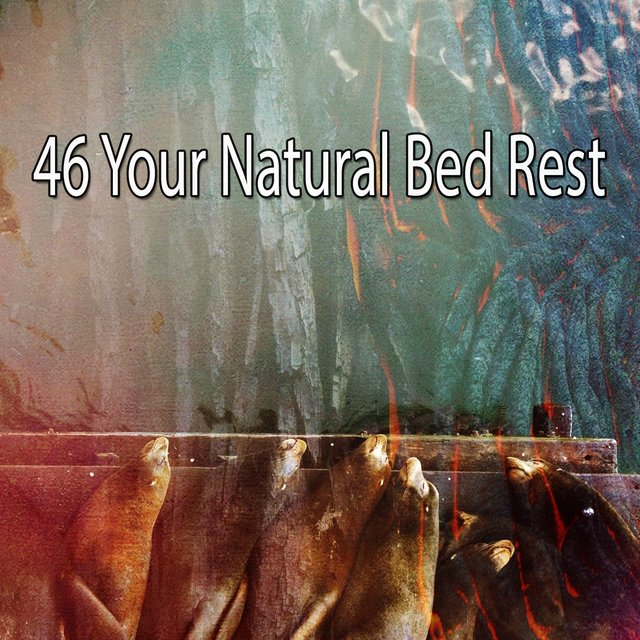 46 Your Natural Bed Rest