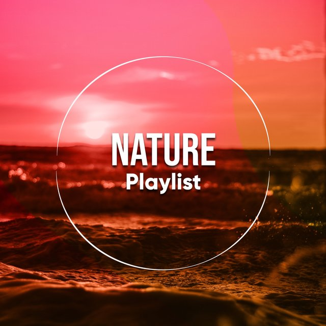 Background Garden Nature Playlist