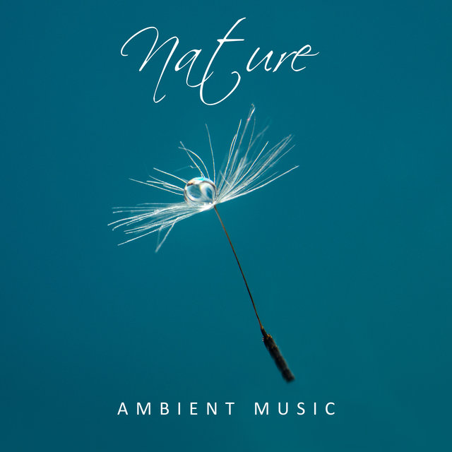 Nature Ambient Music