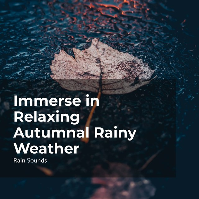 Immerse in Relaxing Autumnal Rainy Weather