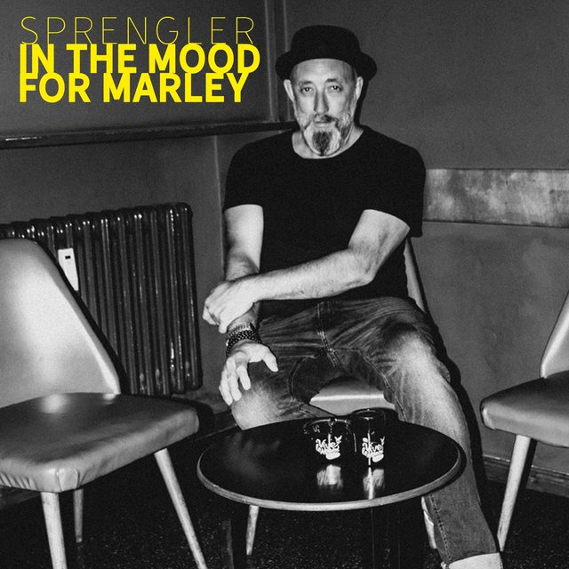 In the Mood for Marley (Single Mix)