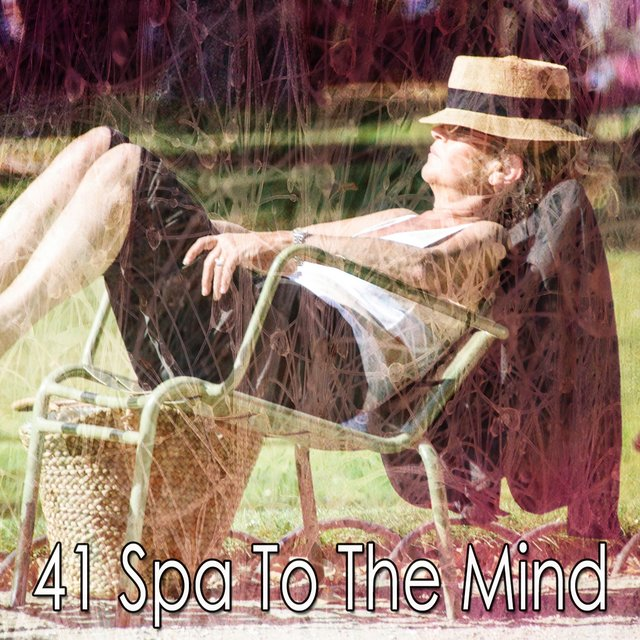 41 Spa to the Mind