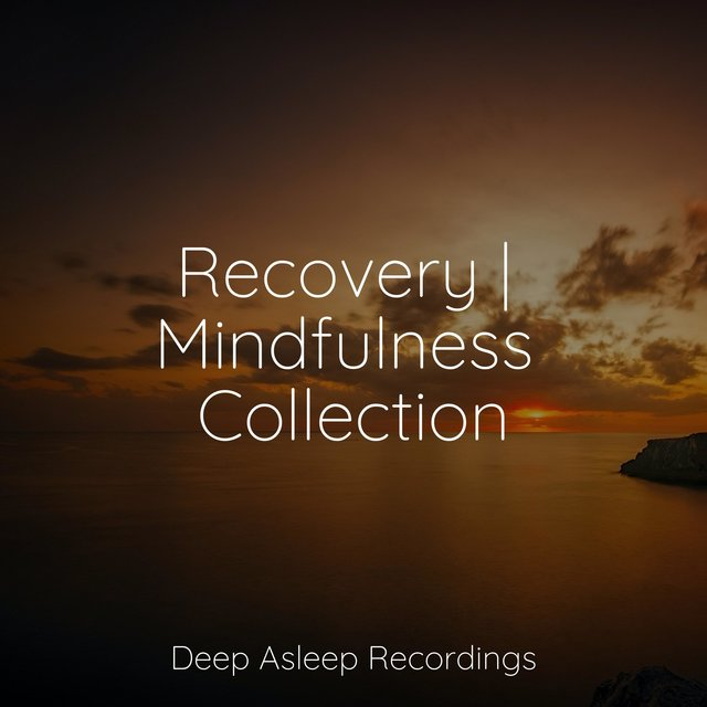 Recovery | Mindfulness Collection
