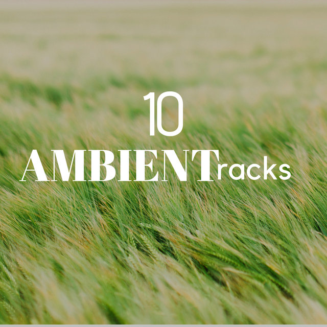 10 Ambient Tracks: Soothing New Age Music with Nature Sounds, Stress Relief Music, Meditation Music