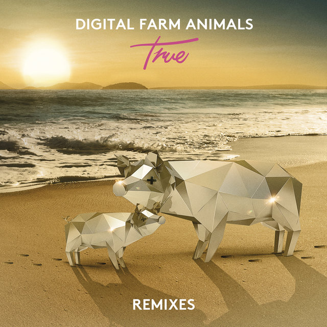 True (Remixes)