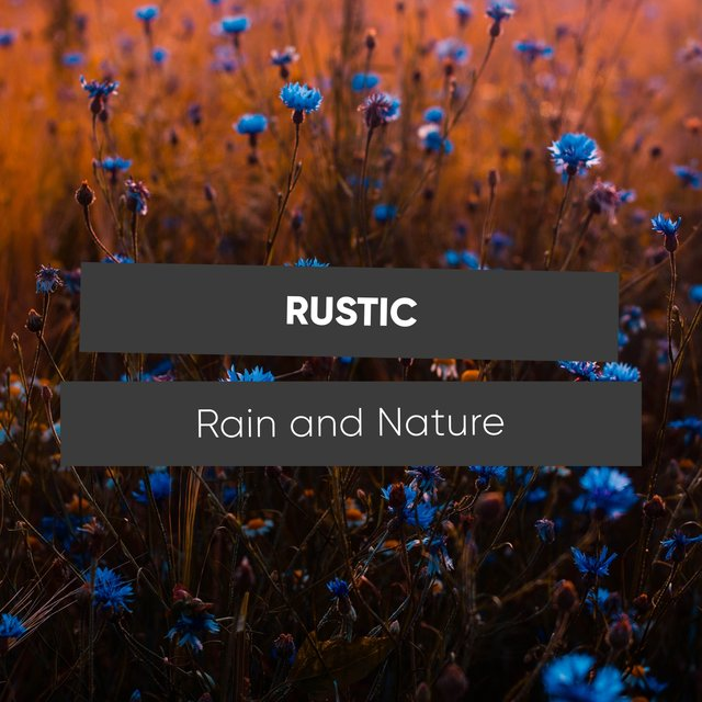 Spiritual Rustic Rain and Nature Recordings