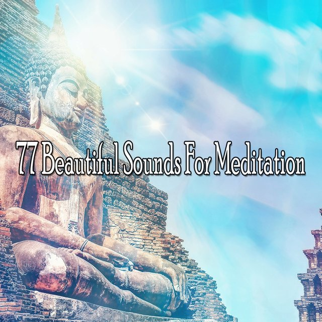 77 Beautiful Sounds for Meditation