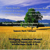 Concert for Bassoon and Orchestra, Op.75: 1.  Allegro, ma non troppo