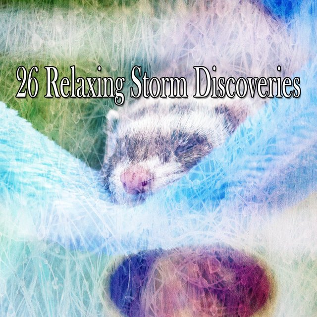 26 Relaxing Storm Discoveries
