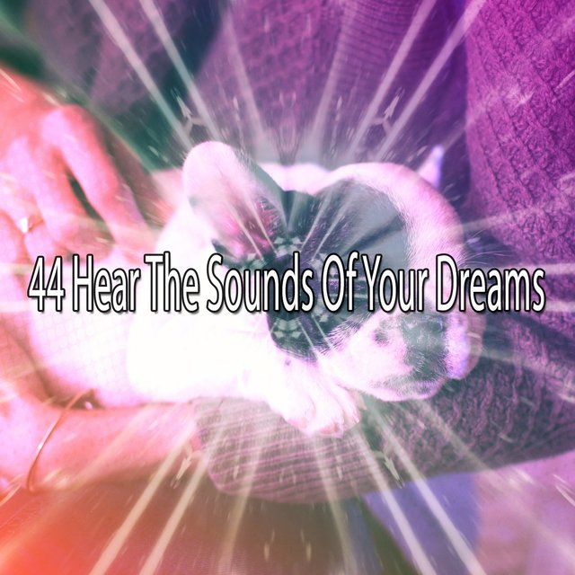 44 Hear the Sounds Of Your Dreams