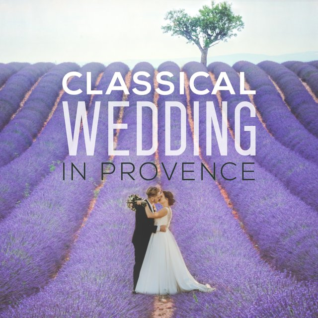 Classical Wedding in Provence