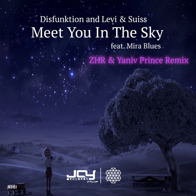 Meet You in the Sky (ZHR & Yaniv Prince Remix)