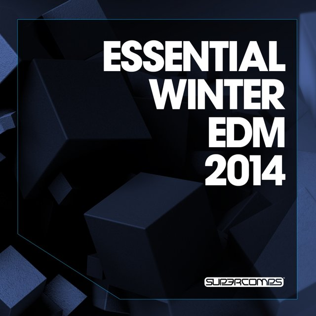 Essential Winter EDM 2014