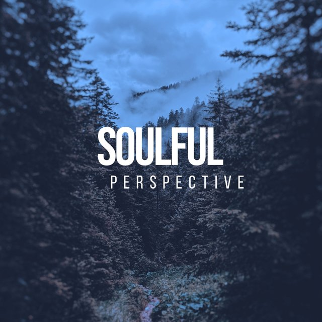 # Soulful Perspective