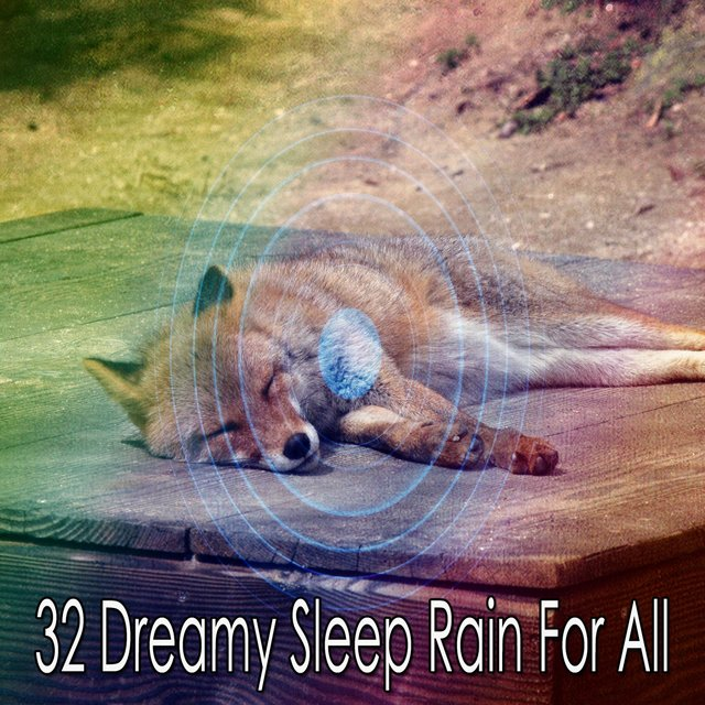 32 Dreamy Sleep Rain for All