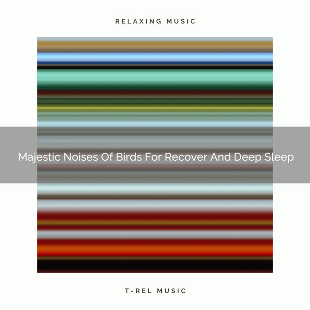 2021 New: Majestic Noises Of Birds For Recover And Deep Sleep
