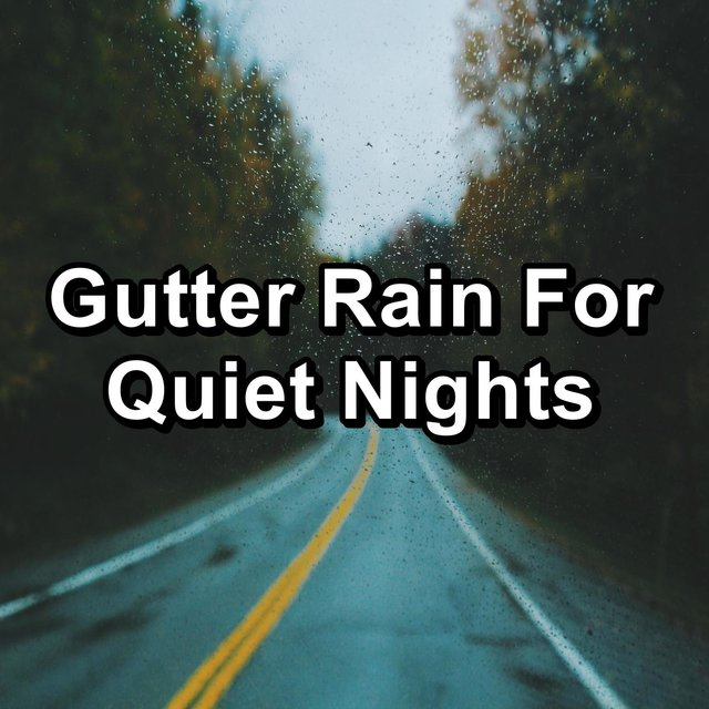 Gutter Rain For Quiet Nights