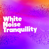 White Noise: Brownian Noises