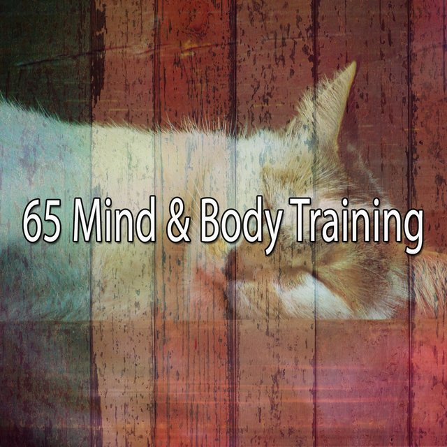 65 Mind & Body Training